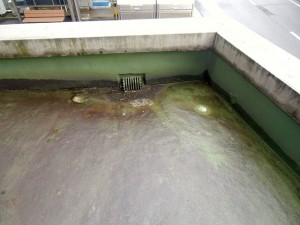 ウレタン防水現場調査1